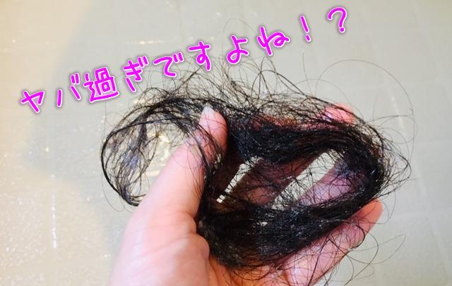 頭髪の写真